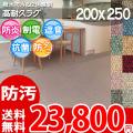 【送料無料】■AS カラーバリエーション豊富♪消臭抗菌エコカーペット(ラグ200×250) アスシャリオ2