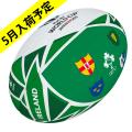 【5月事前予約商品】ギルバート製 RWC2019 アイルランド フラッグボール