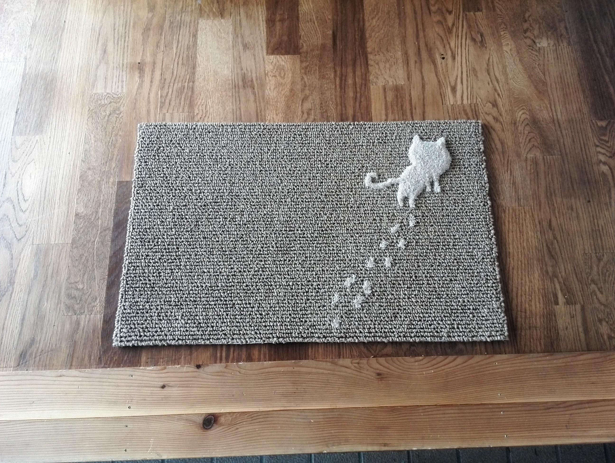 トコトコ猫