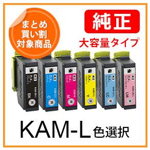 KAM-Lシリーズ(色選択)カメ