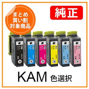 KAMシリーズ(色選択)カメ