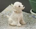 【犬置物】ラブラドール仔犬 puppy♪