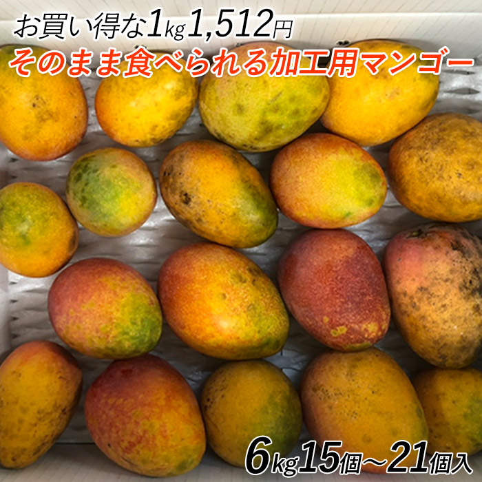訳ありマンゴー 沖縄産マンゴー 加工用 家庭用 訳あり 6kg(15個~21個入)糖度12-13度 送料無料 訳ありマンゴー 業務用マンゴー 加工マンゴー