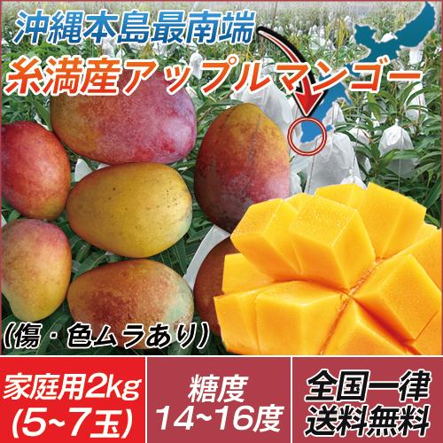【今だけ10%OFF】【代引き不可】送料無料 沖縄 土産 農家直送  訳あり 糸満産 完熟アップルマンゴー 家庭用 2kg(5玉~7玉)※玉数の指定は出来ません。