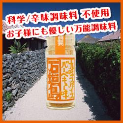 【販売終了】石垣島 九味スパイスバーベキュー味/18g[ゴーヤーカンパニー]