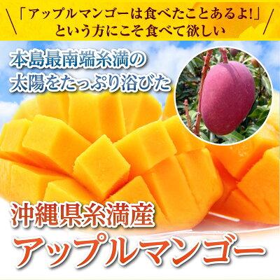 糸満産マンゴー