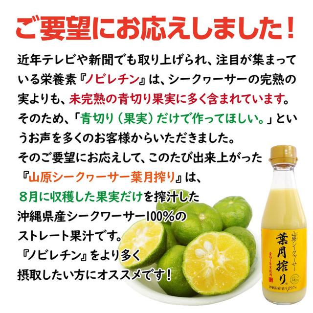 haduki_lp_02.jpg