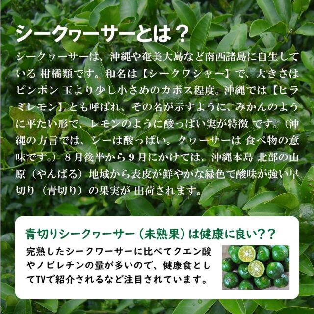 haduki_lp_04.jpg