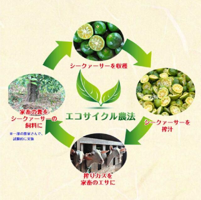 haduki_lp_10.jpg