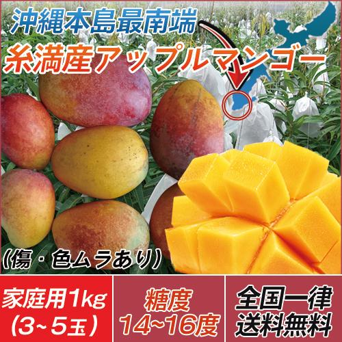 【今だけ10%OFF】【代引き不可】送料無料 沖縄 土産 農家直送  訳あり 糸満産 完熟アップルマンゴー 家庭用1kg(3玉~5玉)※玉数の指定は出来ません。