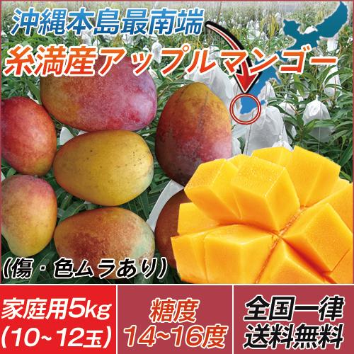【代引き不可】送料無料 沖縄 訳あり 糸満産 完熟 アップルマンゴー 家庭用 5kg(10玉~12玉)※玉数の指定は出来ません。