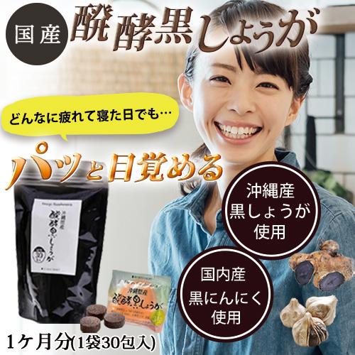 【メール便送料無料】 国産醗酵黒しょうがサプリメント 3粒入り×30包(30日分) ※日付指定不可