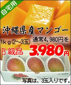 【送料無料】沖縄県産完熟アップルマンゴー<ご自宅用>1kg(2玉~4玉)※玉数の指定は出来ません。