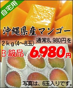 【送料無料】沖縄県産完熟アップルマンゴー<ご自宅用>2kg(4玉~8玉)※玉数の指定は出来ません。