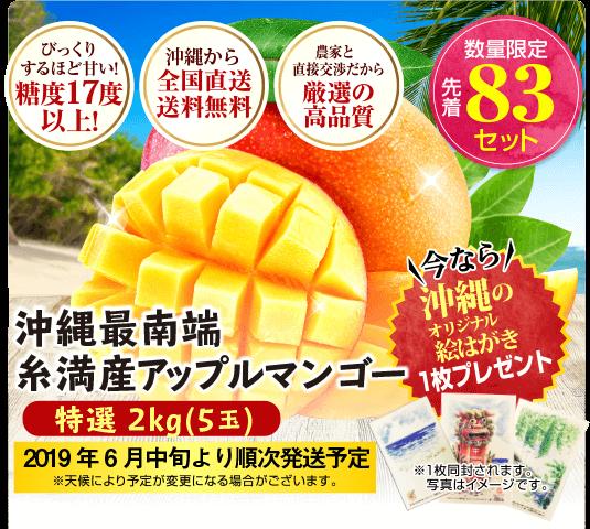 【特選】沖縄最南端アップルマンゴー 2kg(5玉入)
