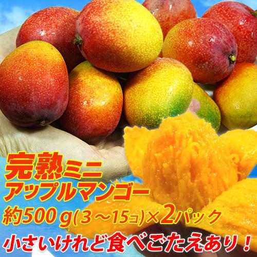 【7月中旬より順次発送】沖縄県産アップルミニマンゴー約1000g(3玉~15玉)500g×2パック アップルマンゴー ミニマンゴー 家庭用 訳ありマンゴー 激安マンゴー マンゴー まんごー <br>玉数の指定は出来ません。