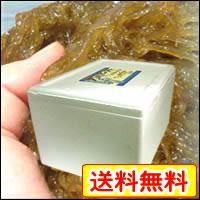 【送料無料】沖縄県久米島産天然太もずく5kg-沖縄土産・海産物