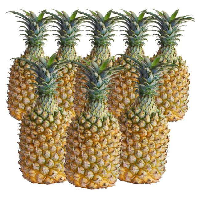 【4月下旬頃より発送開始予定】【送料無料】沖縄県産 スナックパイン 約5kg(約5~10玉)