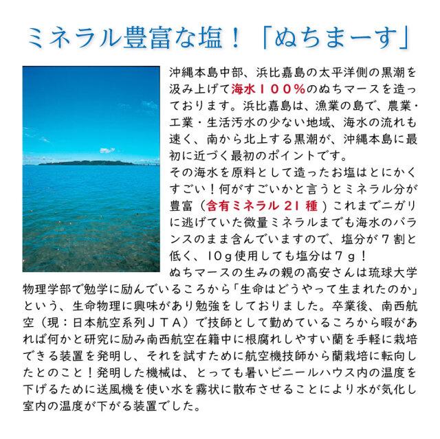 ぬちまーす詳細01