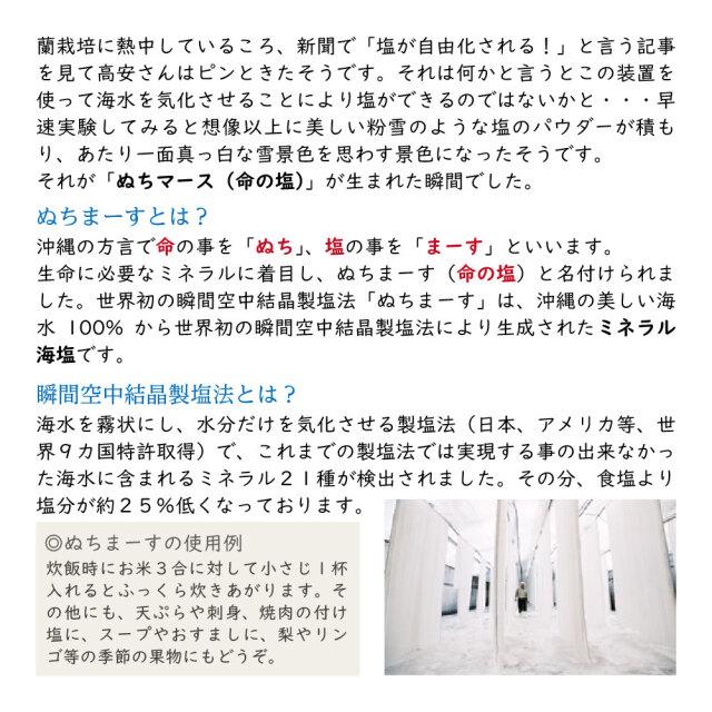 ぬちまーす詳細02