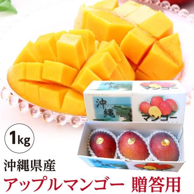 【送料無料】 沖縄県産 アップルマンゴー 贈答用 1kg (2玉~3玉)