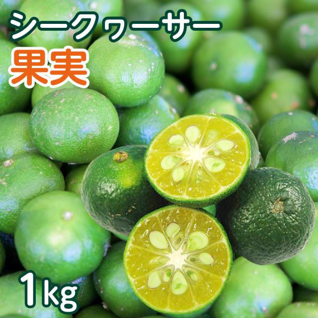 【送料無料】 沖縄県産 青切り シークヮーサー果実 約1kg(約40個~50個前後) ※日時指定・同梱不可