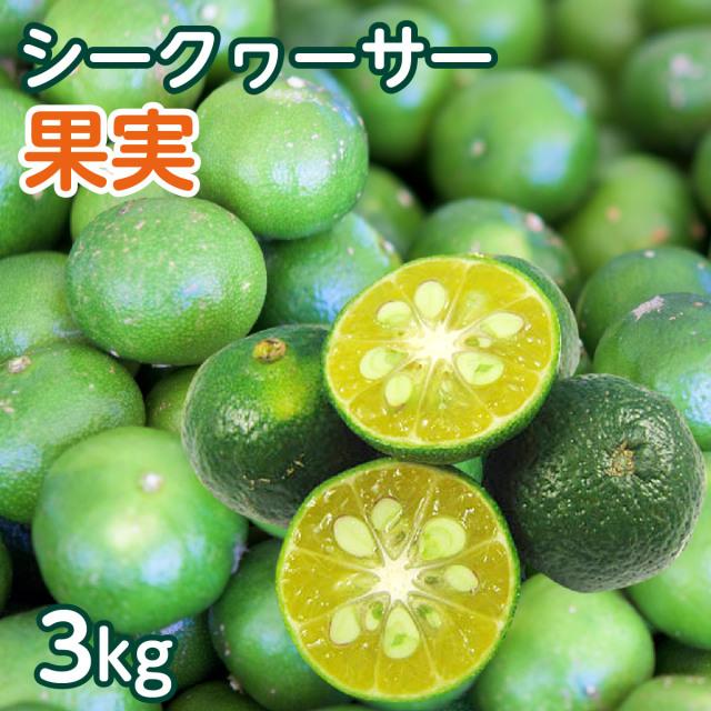 【送料無料】 沖縄県産 青切り シークヮーサー果実 約3kg(約120個~150個前後) ※日時指定・同梱不可