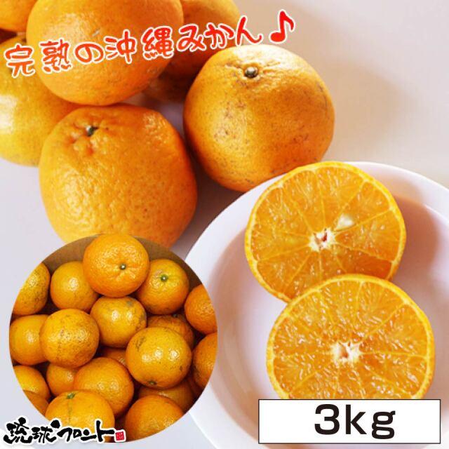 沖縄県産 たんかん 3kg