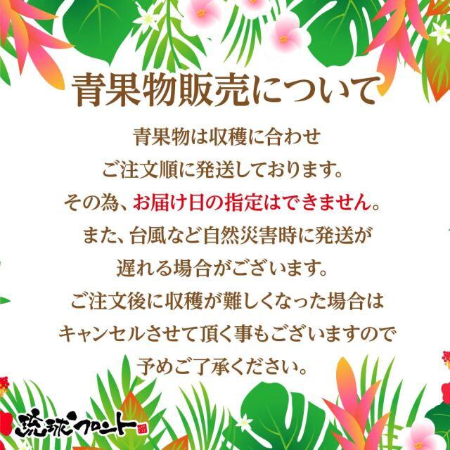 沖縄県産 タンカン
