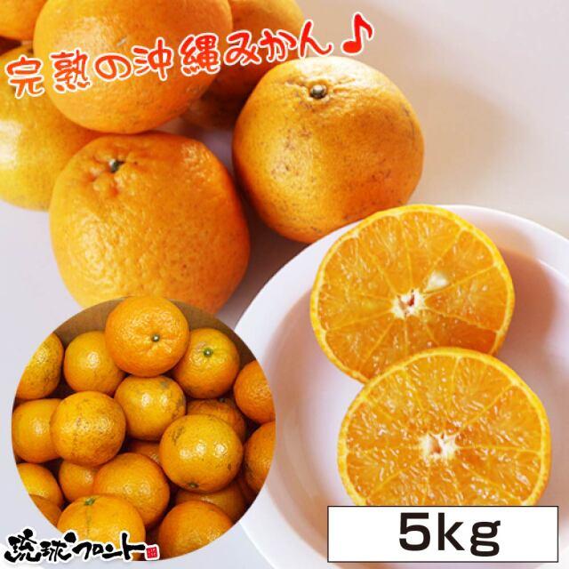 沖縄県産 タンカン 5kg