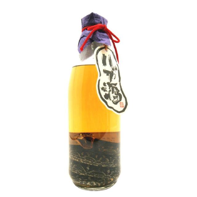 琉球の酒 ハブ酒(ハブ入)
