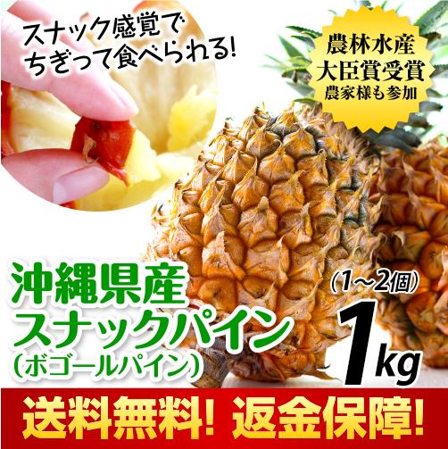 沖縄県産スナックパイン1kg