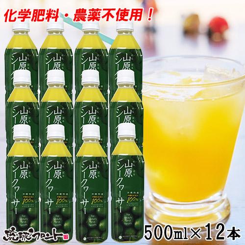 山原シークワーサー ペットボトル500ml×12本