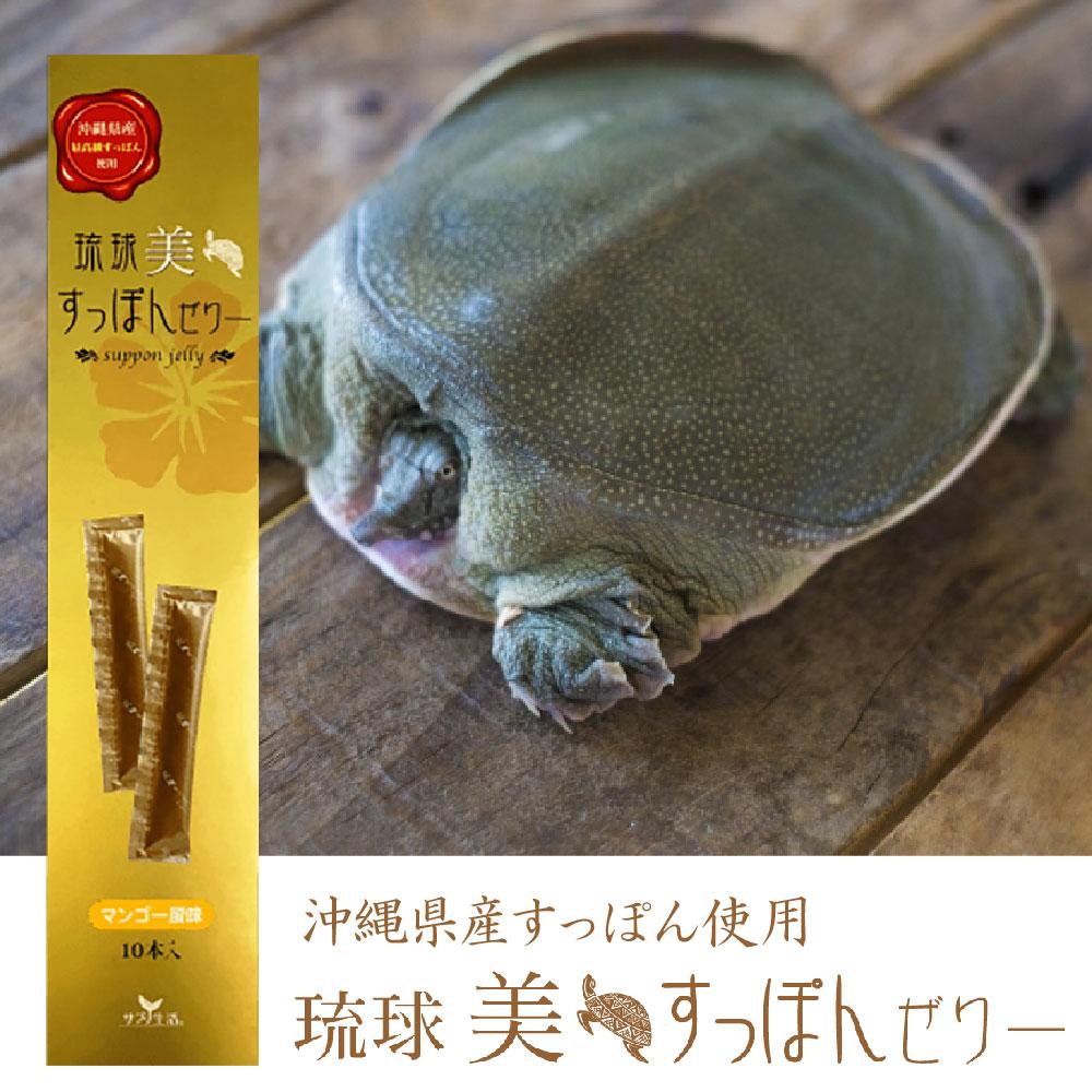 琉球美すっぽんぜりー 10本入