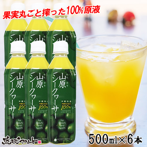 【送料無料】 山原シークヮーサー ペットボトル 500ml×6本
