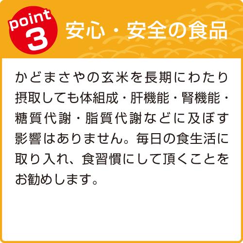 玄米ポイント3