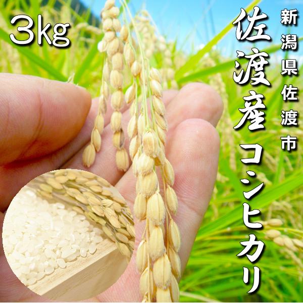キンちゃん米3kg