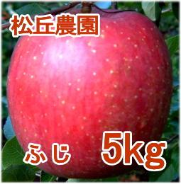 ふじ 5kg [松丘農園]
