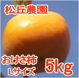 おけさ柿Lサイズ5kg[松丘農園]
