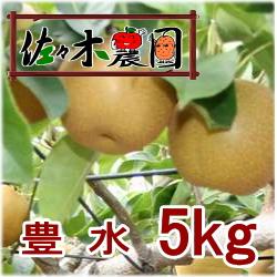 【ご予約受付中】豊水 5kg [佐々木農園]