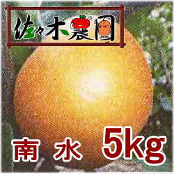 【ご予約受付中】南水 5kg [佐々木農園]