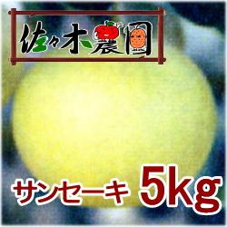 【ご予約受付中】サンセーキ 5kg [佐々木農園]