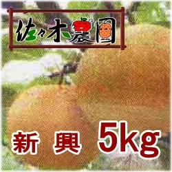 【ご予約受付中】新興 5kg [佐々木農園]