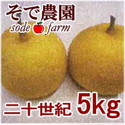 【ご予約受付中】二十世紀 5kg [そで農園]