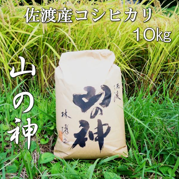 山の神10kg