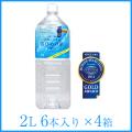【送料無料】天然シリカ水 さひめの泉/2L 6本/4ケース/一部配送不可エリアあり