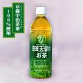 日田天領水のお茶 ペットボトル 500ml×24本 日本全国へお届け 送料込み