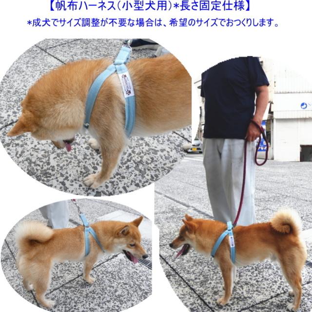 帆布ハーネス(小型犬用)長さ固定式[尾道 帆布鞄 彩工房]【メール便可】