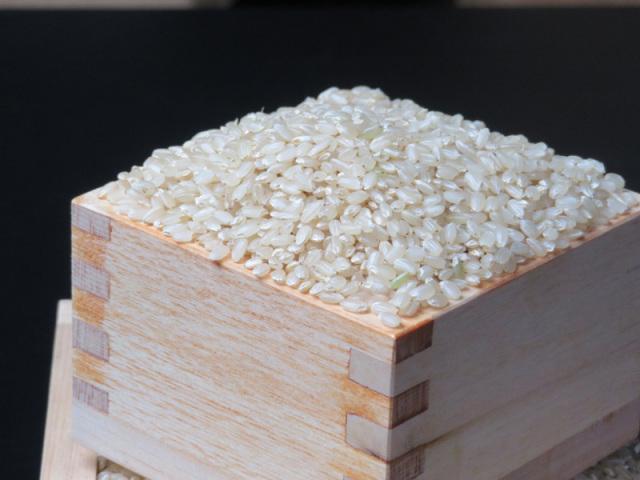 有機ミルキークイーン玄米