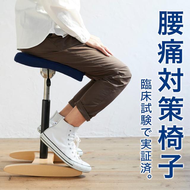 在宅ワークのための腰痛対策椅子 バランスシナジー(組立式)
